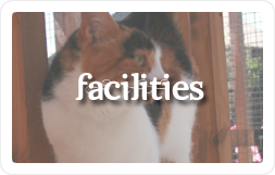 Cattery Facilities